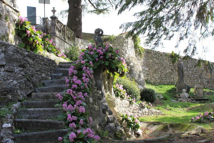 Visita speciale alla scoperta del giardino di Casa Pogliaghi